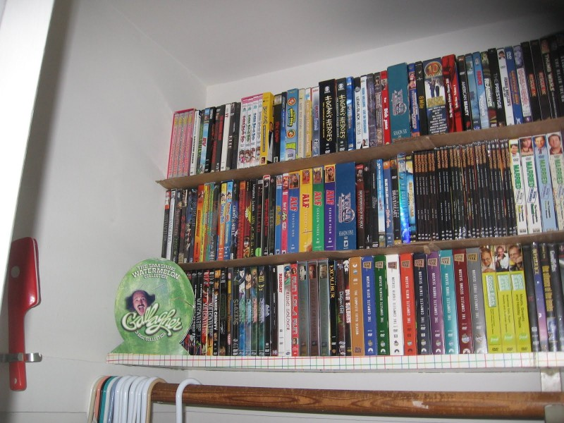 Cardboard Shelf 1