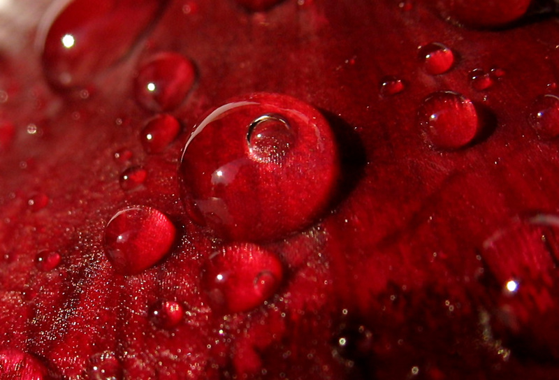 Dragon's Blood Melted Resin